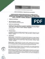 Tdr Servicio Especializado en La Formulacion Del Expediente Tecnico de Atencion de Puntos Criticos Adicional de Obra Rehabilitacion y Mejoramiento de La Carretera Tocache 1