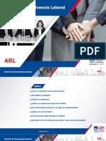 Comite_de_Convivencia_ARLRV_may13.pdf