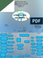 Mapa Conceptual La Organización