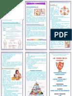 269916157-Triptico-comida-chatarra.pdf