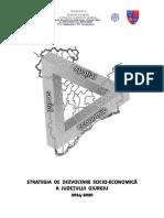 STRATEGIA JUDETULUI GIURGIU Finala 04.03.2014.pdf