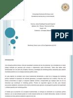 act1_ConceptosBasicos