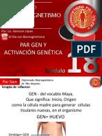 18 Par Gen Activacion Genetica