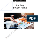 Auditing Notes b.com Part 2 Punjab University