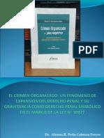 CRIMEN ORGANIZADO-DR.PEÑA CABRERA.ppt