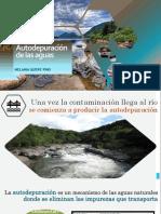 Autodepuración de las aguas.pptx