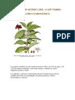 Acido Clorogenico y Salud