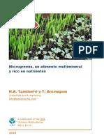 MICROGREENS, UN ALIMENTO MULTIMINERAL Y RICO EN NUTRIENTES.pdf