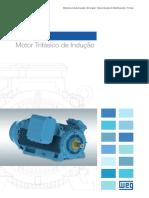 WEG-hgf-motor-trifasico-de-inducao-50029374-catalogo-portugues-br.pdf