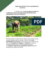 Empresas y problematica Agroindustrial.pdf