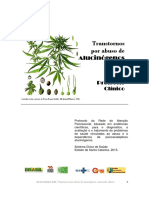 Protocolo RAPS - Abuso de alucinógenos.pdf