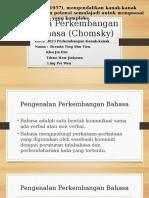 Teori Perkembangan Bahasa (Chomsky)