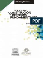 Estudios Sobre Constitución y Derechos Fundamentales.pdf