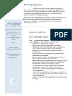 CV - HAROLD ARNILLAS - 2019.docx
