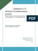 Desde la opulencia a la delincuencia.pdf
