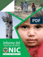 Informe del Consejo Mayor de Gobierno del NIC