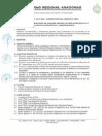 Directiva Concurso Ie y Bpd 2019 1