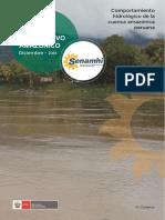Comportamiento Hidrológico de La Cuenca Amazónica_02608sena-9