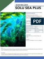 Solu Sea PDF