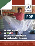 06-Afrodescendientes-Mexico.pdf