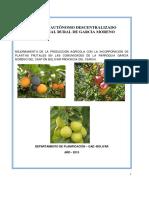 376251388-proyecto-plantas-frutales.pdf