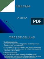 1,2,3 la celula.pdf