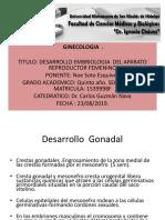 desarrollo embriologico de la aparato reproductor femenino