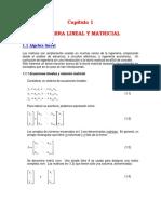 Sistema lineal y matricial