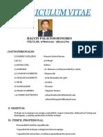 Curriculum Vitae Hbp Mina 2018-Convertido
