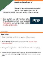 Length measurement and analysis of Paramecium