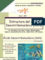 Estructura ADN Junio 07 (1).ppt