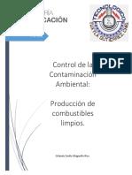 Producción de Combustibles Limpios y Renovables.docx