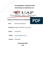 FASES - PROYECTO
