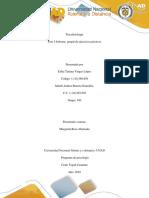 Psicofisiologia Fase 3 Entrega Final-Grupo 180