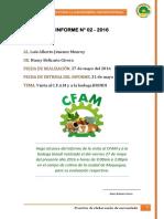 Informe de Cfam de La Nansy