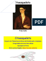 Citoesqueleto To