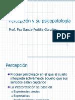 PM Percepcion