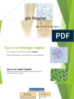 1. Histologia Vegetal.pptx