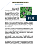 CALIDAD NUTRICIONAL DE ALFALFA.docx