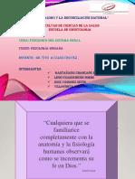 Fisiologia Del Sistema Renal