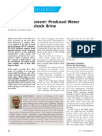 brine 1.pdf