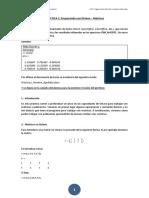 Práctica 1 - Matrices