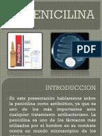 Penicilina Dp Completo
