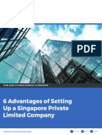 6 Advantages of Setting Up a Singapore Private Limited Company
