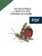 Clave Dicotómica Insectos