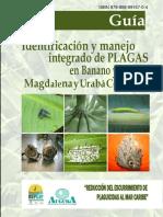 plagas-defintiva.docx
