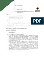 informe 4. peso especifico, equivalente arena, materia orgánica. CORREGIDO.docx