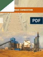 Biomass combustion manual - 6 october 2015.pdf