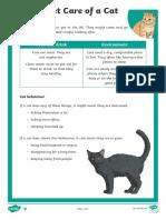 Pet care of a cat