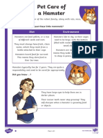 Pet Care of a Hamster Differentiated Reading Comprehension Activity.pdf